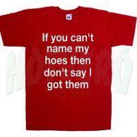 If You Can't Name My Hoes Slogan T Shirt