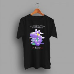 Summer Session 1994 Northwestern University College T Shirt